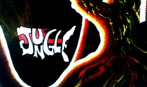 Jungle 1969 inner artwork